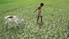 Climate change to ′severely impact′ growth in South Asia