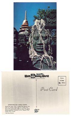 WDW - Jungle Cruise Postcard