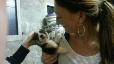 Puppy 6,5 week