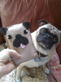 Pug IPhone sleeve...handmade present from my daughter-in-law Corey Taylor!
