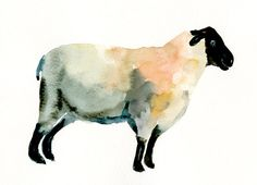 SHEEP by DIMDImini ACEO print