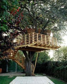 BaumHaus, Fancy Tree house