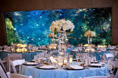 after seeing these images, I want an aquarium wedding