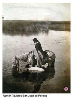 Paisano a caballo en laguna de estancia Pereira por Ramón Tavieres, colección Witcomb, s/f.