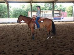 Eight Ways to Improve Your Horsemanship Position – America's Horse Daily