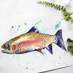 Great Father's Day Gift.  Paint this beautiful Rainbow Trout with our Watercolor Kit or watch our Free Tutorial.