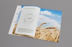 Annual Report of KTG Group on Behance