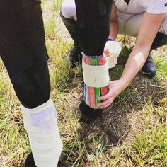 Great idea! Who needs fancy icepacks! Horse, icepack, leg, injury, equine first aid, sounded horse, equine injury, horse wound, horse bandages, ice Photo: Emily Francis.
