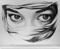 Veil of Perception by Petrus Boots ~ Original Pencil Drawing ~ Art ...