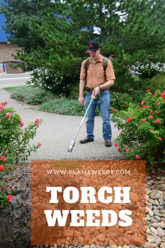 For larger areas such as large acreage, farm and ranch properties, or large area that need completely eradicated of vegetation, you may opt for one of the Heavy Duty torch kits . These torches have large powerful flames that will make flaming large areas much faster. Organic Weed Control, Creative Landscape, Weed Killer, Living Off The Land, Choose The Right, Torches, Lawn And Garden, Curb Appeal, Organic Gardening