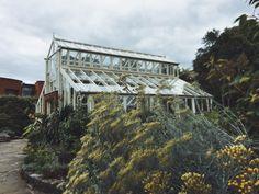 Dublin National Botanic Gardens