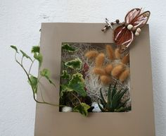 les 8 meilleures images du tableau cadre v g tal sur pinterest jardin int rieur plantes. Black Bedroom Furniture Sets. Home Design Ideas