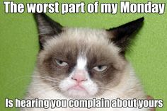 Grumpy+Cat+thanks | known as Grumpy Cat, a feline who has a giant Internet fan base thanks ...
