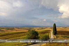 tuscany landcape cypress