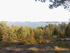View from Vartiosaari in September