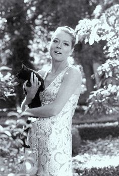 Diana Rigg, who over-indulges in coats made from wild cats, nonetheless likes domestic ones. Avengers Girl, New Avengers, Female Actresses, English Actresses, Celebrities With Cats, Celebs, Diana Riggs, Dame Diana Rigg, Diana Dors