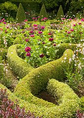 knot garden  Waterperry Gardens, Oxford