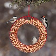 Red bird wreath fun 16 Ideas for 2019
