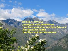 You have persevered and have endured hardships for my name, and have not grown weary. Revelation 2:3 NIV
