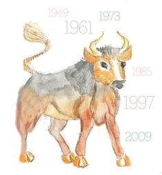 Year of the Ox illustrated by Maece Seirafi
