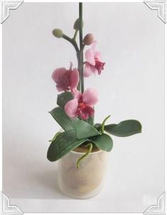 how to: mini orchid