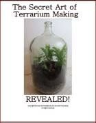 For more information about Terrarium Containers can visit http://www.hpotter.com/terrariums/