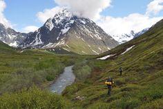 Peters Creek Backcountry, Alaska