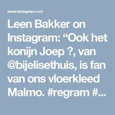 """Leen Bakker on Instagram: """"Ook het konijn Joep 🐰, van @bijelisethuis, is fan van ons vloerkleed Malmo. #regram #vloerkleed #leenbakker #interior4all"""""""