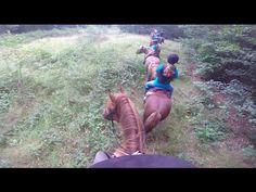 Ponykamp week 4 2016 Stal 't Reelaer | GoPro