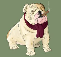 And heres the last guy- what a mug. What a fun series. I think the next step is to put them in the same scene all together- but in case you can't tell from the rest of my gallery, my weakne. British Bulldog, Old English Bulldog, Cute Bulldogs, Funny Bulldog, Bulldog Images, Bully Dog, Funny Drawings, Beautiful Dogs, Puppy Love