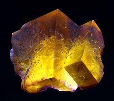 Glowing crystals of yellowish-golden Fluorite with purple accenting! From the Minerva No. 1 Mine, Cave-in-Rock, Hardin County, Illinois. Ex. Goings Mineral Collection