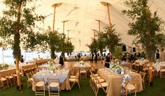 ... Hilton Head Sailcloth Event with Greenery | Sperry Tents Southeast ...