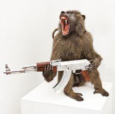 Peter Gronquist : Baboon