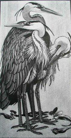 Siege of Herons ~ Wood Engraving ~ Colin See-Paynton ~ The Wildlife Art Gallery Más Davidson Galleries, Monochrom, Wood Engraving, Wildlife Art, Painting & Drawing, Encaustic Painting, Funny Art, Woodblock Print, Bird Art