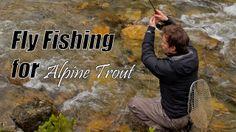 Nicely done video!  Flyfishing in Austria for brook trout, brown trout and rainbow trout in a lake near the river Taurach.  Fliegenfischen in Österreich auf Saibling, Bachforelle und Regenbogenforelle in der Taurach.  Visit: http://www.troutstalking.de,