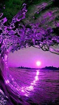 ~♥Some Purple Luv♥~