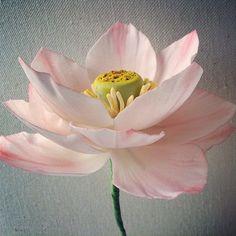 Lotus flower/gumpaste flower   Flickr - Photo Sharing!
