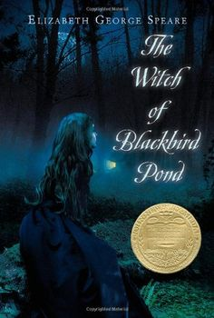 The Witch of Blackbird Pond by Elizabeth George Speare http://www.amazon.co.uk/dp/0547550294/ref=cm_sw_r_pi_dp_XJq6ub1C2A5GY