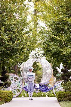 Major Domo delivers a Cinderella inspired glass slipper at a Disneyland wedding ceremony Princess Wedding, Cinderella Wedding, Fairytale Weddings, Disney Weddings, Disney Inspired Wedding, Disney World Wedding, Formal Wedding, Summer Wedding, Wedding Reception