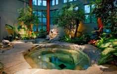 Tropical Hot Tub - Find more amazing designs on Zillow Digs!