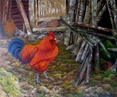 """Quadro Pintura by Jorge Marcovich  """"Galo"""" 50x60cm - Oil Painting cock chicken"""