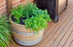 Create a herb garden in a pot with rustic charm using a recycled wine barrel.