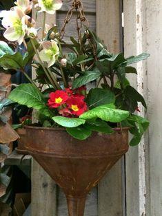 A repurposed funnel https://thegardendiaries.wordpress.com/2015/02/21/northwest-flower-garden-highlights/