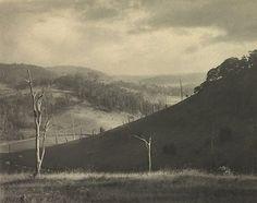Autumn light by Harold Cazneaux, pre1934