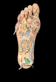 Acupressure Pain Relief Map of Foot- Love that the sciatic nerve is a snake. It certainly spends a lot of time biting me! Sciatic Nerve Relief, Sciatica Pain, Sciatica Stretches, Foot Chart, Reflexology Massage, Reflexology Points, Lymph Massage, Foot Massage, Foot Love