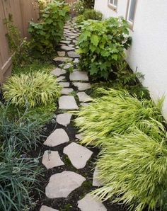 Side yard idea. Or personal alley space - wish I had thought of this when I lived on Moyamunseng in Philly! I had an alley just this size...that no one used and no one else saw except my two fellow peeps in the two apts below me...who would have loved it!
