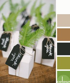 green brown and black color palette, color combinations, color schemes, color ideas, color for interiors, lime green, avocado green, black, warm brown, taupe, white, pantone golden lime