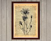 Flower daisy plant nature Earth print Rustic decor Cabin Vintage Retro poster Dictionary page Home interior Wall 0016