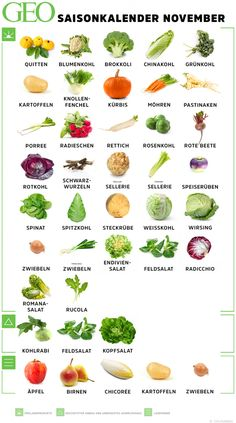 Saisonkalender November: Obst & Gemüse Season calendar November: find out which fruits and vegetables you should eat now. Raw Food Recipes, Healthy Recipes, Season Calendar, Cauliflower Gratin, November, Raw Food Diet, Fat Burning Drinks, Cream Recipes, Healthy Foods To Eat