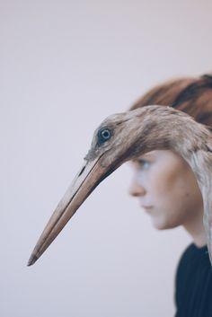 een vogel en een vrouw als profil, erg mooi gematcht